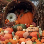 Pumpkins at Dollywood