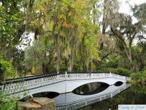Brücke Magnolia Gardens