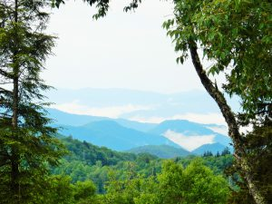Lookout, Great Smoky Mountains