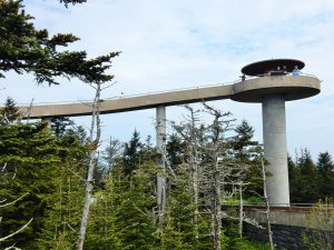 Clingmans's Dome, Tennessee