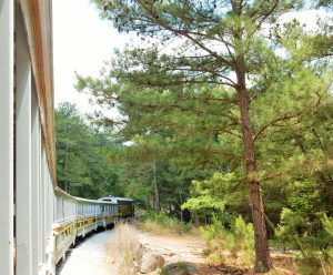 Train at Stone Mountain State Park