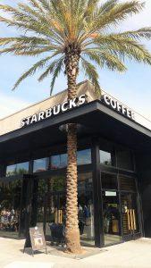 Starbucks Orlando