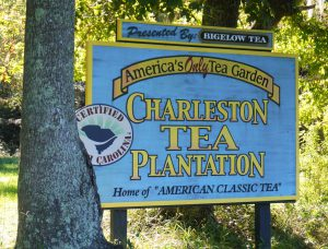 Home of American Classic Tea