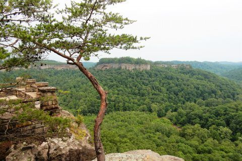 Chimney Top Rock in Kentucky