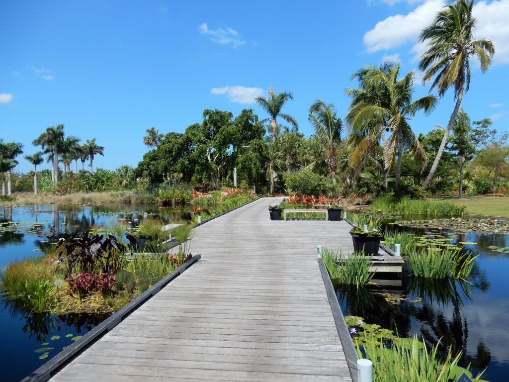 Walkway over Water Garden