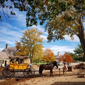 Horses and Carriage Colonial Williamsburg