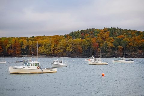 Bar Harbor in Fall